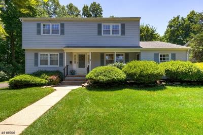 Somerville Boro Single Family Home For Sale: 3 Arlyne Dr