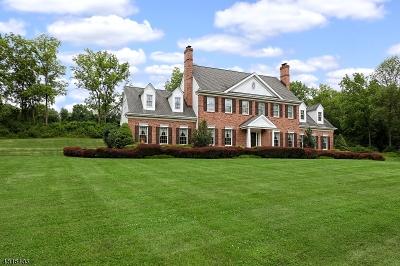 Delaware Twp. Single Family Home For Sale: 5 Upper Creek Rd