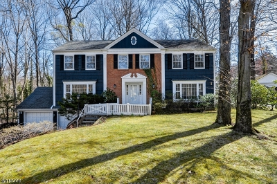 New Providence Single Family Home For Sale: 8 Countryside Dr