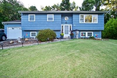 Bridgewater Twp. Single Family Home For Sale: 57 Shady Ln