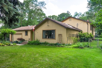 Warren Twp. Single Family Home For Sale: 29 Fairfield Ave