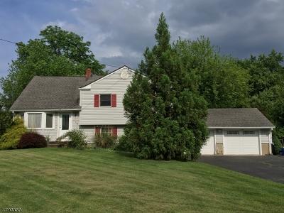 Hillsborough Twp. Single Family Home For Sale: 103 Kimberly Rd