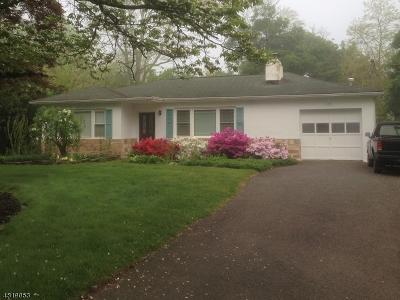 Hillsborough Twp. Single Family Home For Sale: 1290 Millstone River Rd