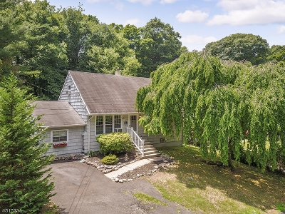 Oakland Boro Single Family Home For Sale: 112 Pawnee Ave.