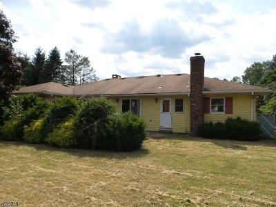 Roxbury Twp. Single Family Home For Sale: 11 Ballentine St