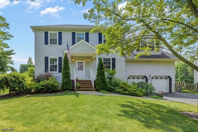 Hillsborough Twp. Single Family Home For Sale: 60 Fisher Dr