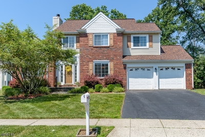 Piscataway Twp. Single Family Home For Sale: 170 Buttonwood Dr