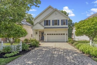 Chatham Boro Single Family Home For Sale: 10 Vine St