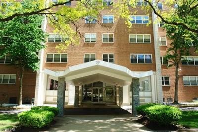 Paterson City Condo/Townhouse For Sale: 39 E 39th St #8L