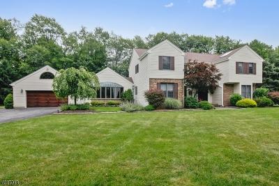 Roseland Boro Single Family Home For Sale: 18 Ford Ln