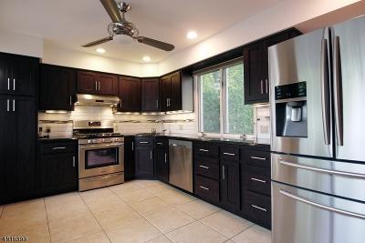 New Providence Single Family Home For Sale: 228 Livingston Ave