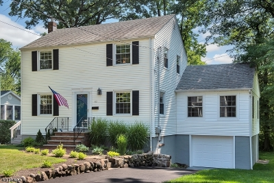 Chatham Boro Single Family Home For Sale: 63 Tallmadge Ave