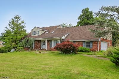 Warren Twp. Single Family Home For Sale: 7 Ellsworth Dr