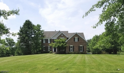 Alexandria Twp. Single Family Home For Sale: 21 Rapp Rd