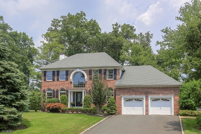 Westfield Town NJ Single Family Home For Sale: $1,130,000