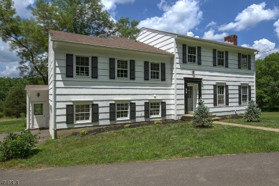 Bernards Twp. Single Family Home For Sale: 518 Mine Brook Rd