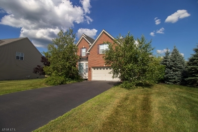 Clinton Twp. Single Family Home For Sale: 17 Crestview Dr