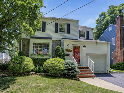 Chatham Boro Single Family Home For Sale: 19 Tallmadge Ave