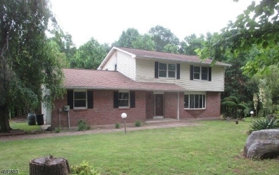 Hillsborough Twp. Single Family Home For Sale: 415 Long Hill Rd