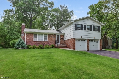 New Providence Single Family Home For Sale: 115 Woodbine Cir