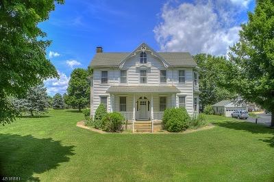 Delaware Twp. Single Family Home For Sale: 34 Dunkard Church Rd