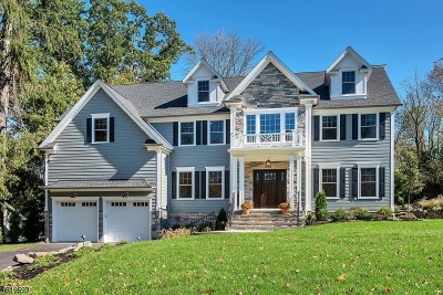 Berkeley Heights Single Family Home For Sale: 115 Kent Drive