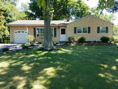 Piscataway Twp. Single Family Home For Sale: 317 Rivercrest Dr