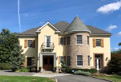 Harding Twp. Single Family Home For Sale: 117 Jenks Rd