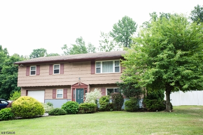 Mount Olive Twp. Single Family Home For Sale: 16 Brookside Dr