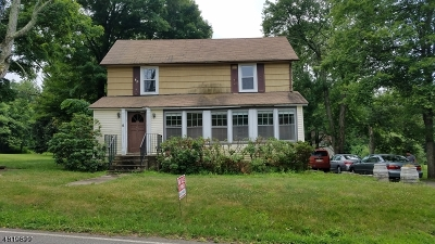 Randolph Twp. Single Family Home For Sale: 2 & 6 Morris Tpke