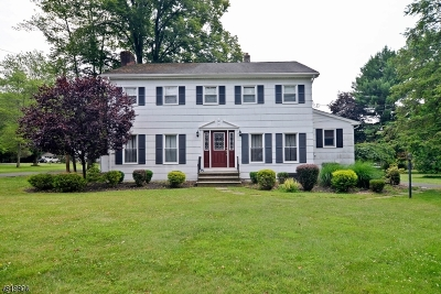 Bridgewater Twp. Single Family Home For Sale: 26 Allen Rd