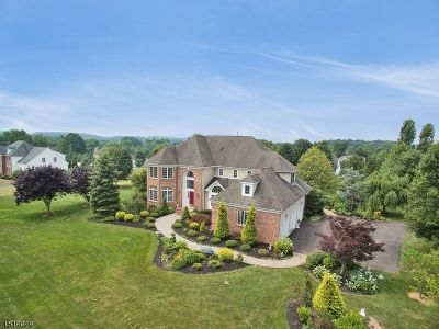 Alexandria Twp. Single Family Home For Sale: 5 Stone Mill Dr