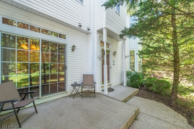 Morristown Town, Morris Twp. Condo/Townhouse For Sale: 14 Timothy Ct