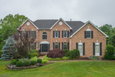 Chester Single Family Home For Sale: 19 Spring Lake Dr