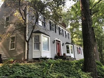 Tewksbury Twp. Single Family Home For Sale: 26 Guinea Hollow Rd