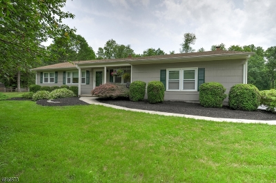 Clinton Twp. Single Family Home For Sale: 19 Country Hill Rd