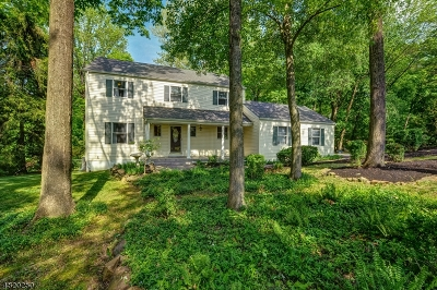 New Providence Single Family Home For Sale: 12 Johnson Dr