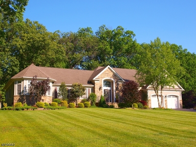 Branchburg Twp. Single Family Home For Sale: 922 Manchester Drive