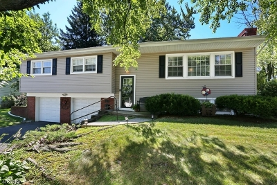Edison Twp. Single Family Home For Sale: 18 Harmon Rd