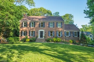 Mountain Lakes Boro Single Family Home For Sale: 100 Boulevard