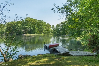 Mountain Lakes Boro Single Family Home For Sale: 034 W Shore Rd