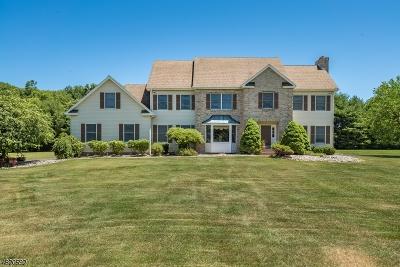 Long Valley Single Family Home For Sale: 268 Fairmount Rd