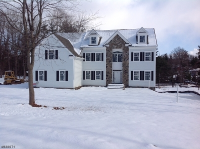 Branchburg Twp. Single Family Home For Sale: 855 Parsonage Hill Drive
