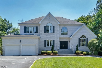 Montville Twp. Single Family Home For Sale: 4 Hickory Dr