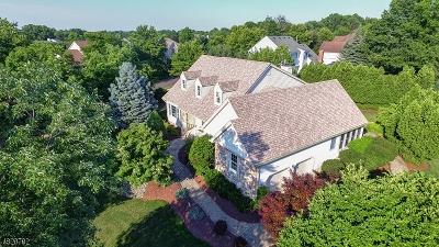 Hillsborough Twp. Single Family Home For Sale: 2 Baird Dr