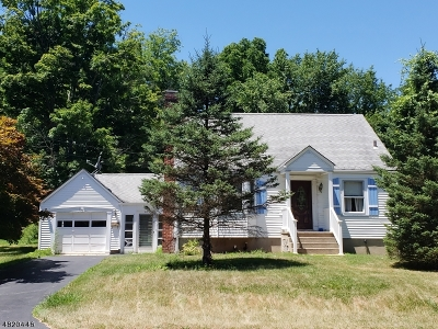Sussex County Single Family Home For Sale: 36 Plainfield Ave