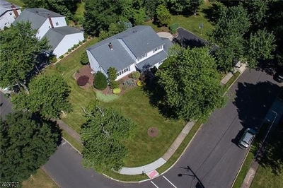 Edison Twp. Single Family Home For Sale: 85 Stephenville Pky