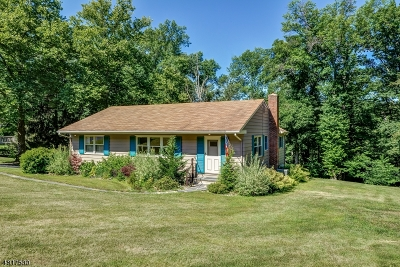 Long Hill Twp Single Family Home For Sale: 64 W Rayburn Rd