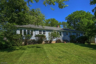 East Hanover Twp. NJ Single Family Home For Sale: $529,000