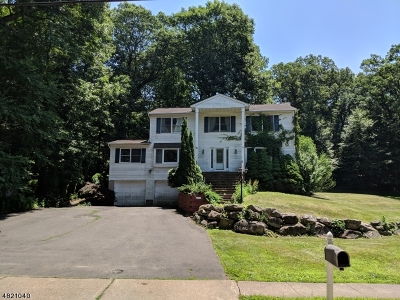 Roxbury Twp. Single Family Home For Sale: 98 Orben Dr